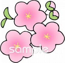 桃の花 桃の節句イラストなら小学校幼稚園向け保育園向けの