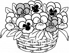 パンジー 花かごイラストなら小学校幼稚園向け保育園向けの
