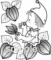 ホオズキイラストなら小学校幼稚園向け保育園向けのかわいい無料