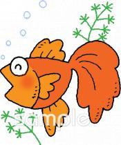 金魚イラストなら 小学校 幼稚園向け 保育園向けのかわいい無料イラストお試しフリー素材 カット がいっぱいの安心サイトへどうぞ
